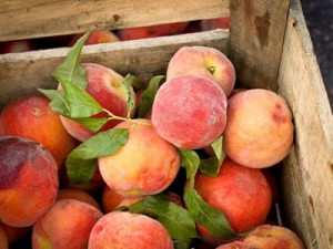 Peaches in crate for Kira Catanzaro